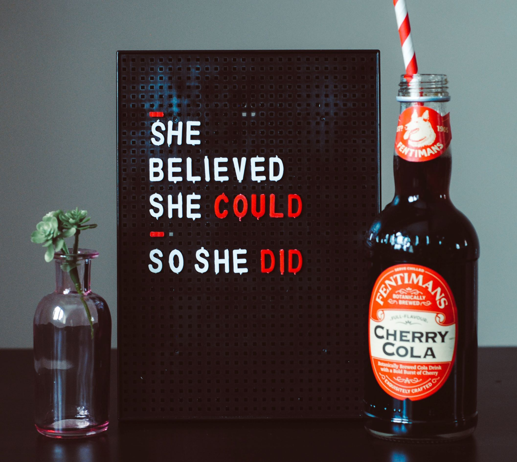 she-believed-she-could-smaller